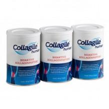 Collagile human bioaktive Kollagenpeptide 3